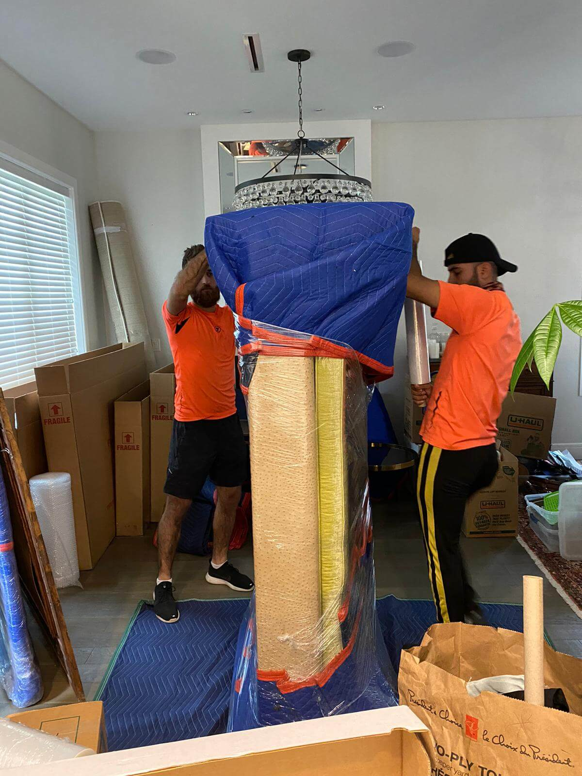 Movers and Packers Mission